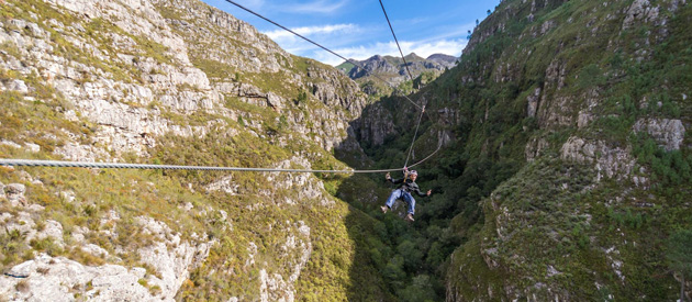 Image result for cape canopy tour elgin