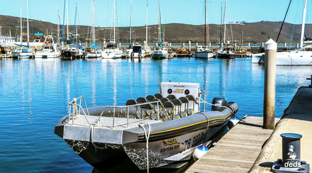 Knysna RIB Adventures
