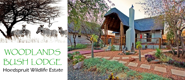 Woodlands Bush Lodge, Accommodation in Hoedspruit District, Hoedspruit District Self Catering House, Cottage, Chalet Accommodation, Valley of the Olifants