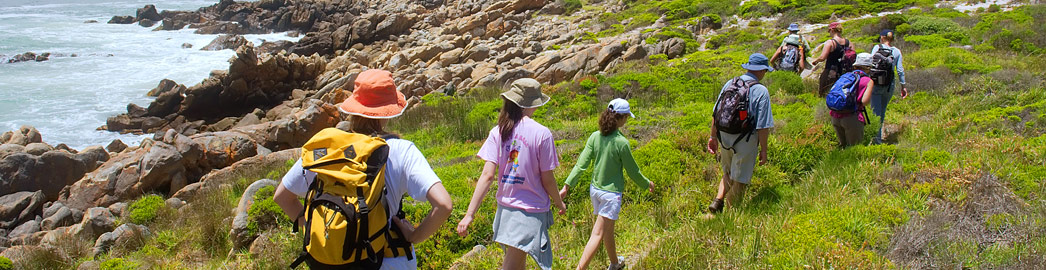 Activities South Africa